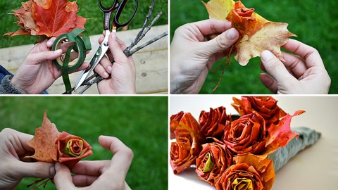 How to Make a Rose Out of a Maple Leaves