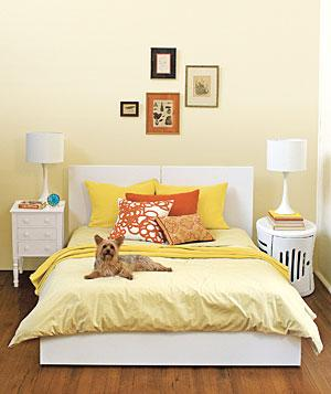 Dog-on-bed_20